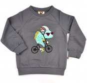 Sweatshirt - Fishes